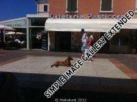 20110626_Makakadi_Am Gardasee laesst es sich gut entspannen 2011_0388